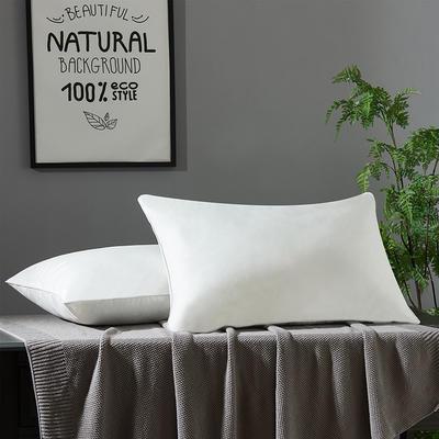 2020新款全棉防雨布枕芯1100g 全棉防雨布枕芯