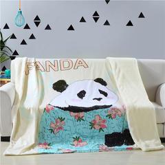 羊羔绒时尚被套毯空调毯 160x210cm panda