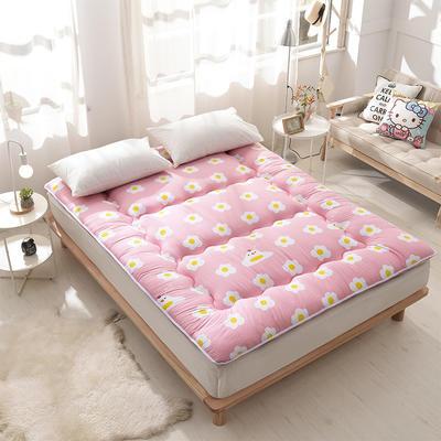 科含床垫         全棉加厚床垫 0.9*2.0米 炫彩人生