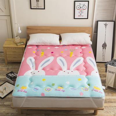 科含床垫           磨毛斜纹床垫 0.9*2.0米 粉粉兔