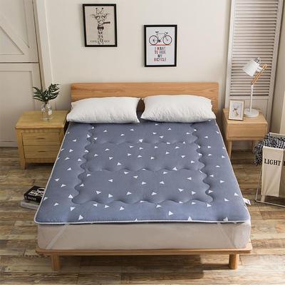科含床垫           磨毛斜纹床垫 0.9*2.0米 思绪