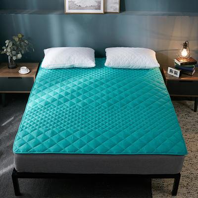 2019純色可水洗床墊 90*200 綠色