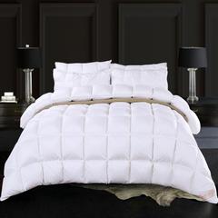 抗日95鹅绒款 80S全棉柔赛丝面包格羽绒被 鹅绒被 冬被子被芯 200X230cm3斤 白色