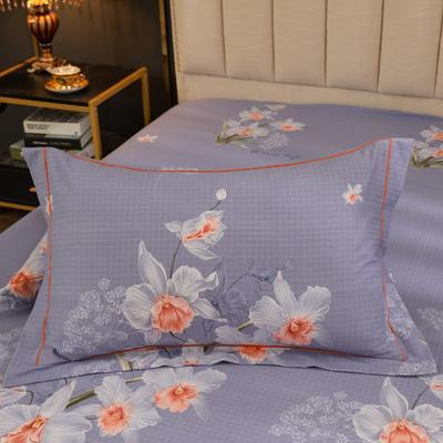 2020新款全棉生态磨毛单品枕套 48cmX74cm/对 花颜