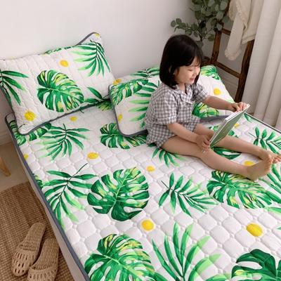2019新款床垫 0.6*1.2 香格里拉
