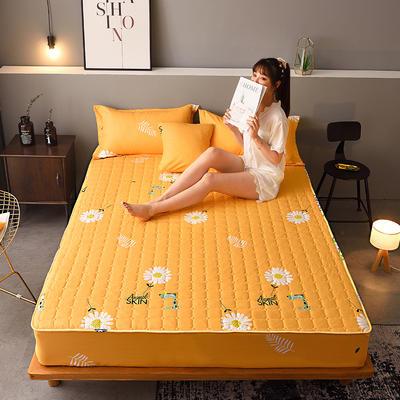 2020新款磨毛单品床笠 180cmx200cm夹棉款 小雏菊-黄