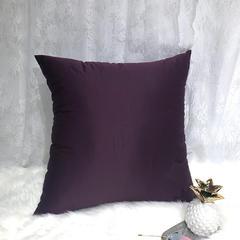 水洗真丝抱枕 40X40cm/只 紫色
