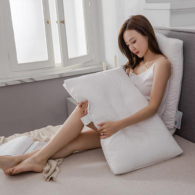 2019新款-全棉A类抗菌防螨枕芯 48*74cm800克