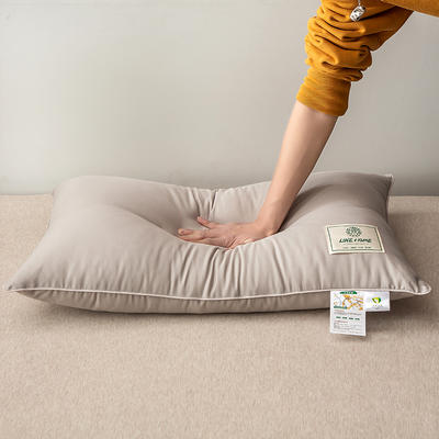 2020新款-A类大豆抗菌枕芯 48*74灰色1200克