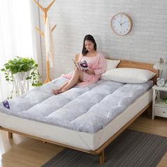 床垫系列 1.0m*2.0 优雅灰