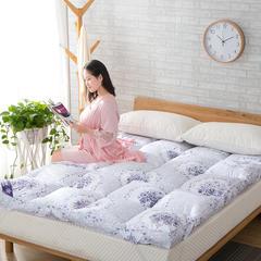 床垫系列 1.0m*2.0 青花瓷
