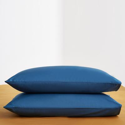2019新款60纯色单品枕套 48cmX74cm/只 纯色-月光蓝
