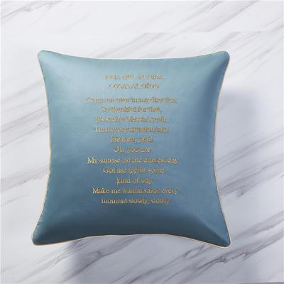 2019新款60纯色刺绣单品抱枕 单枕套45*45/只 浅石蓝