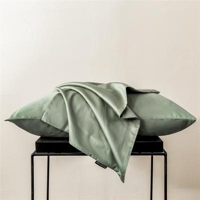 2020新款60s纯色单品枕套 48cmx74cm/一只 纯色-灰绿