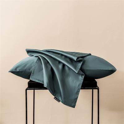 2020新款60s纯色单品枕套 48cmx74cm/一只 纯色-浅石蓝