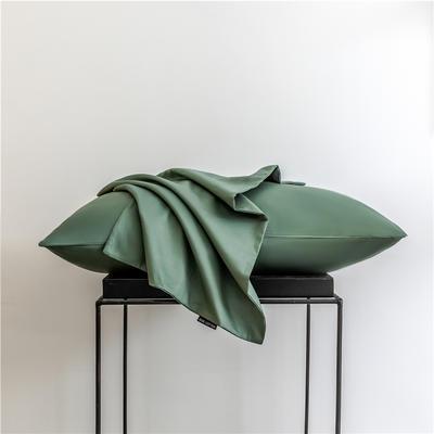2020新款60s纯色单品枕套 48cmx74cm/一只 纯色-灰草绿