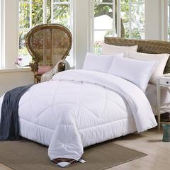 元元被业 全棉喷气磨毛 素色棉花冬被芯 150x200cm4.6斤 全棉磨毛棉花冬被-白色