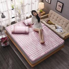 金伟垫业     提花冰丝席床垫地垫 90*200(两件套) 盛世牡丹-粉