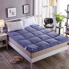 磨毛羽丝绒床垫 蓝色 0.9x2米 【4斤】 蓝色