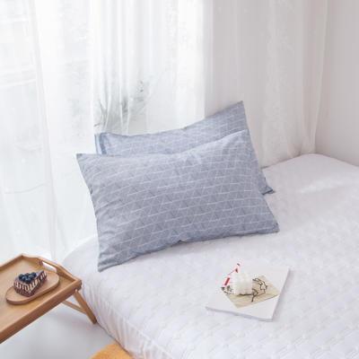 2020新款-ins全棉枕套 48x74cm/一对 华丽风尚