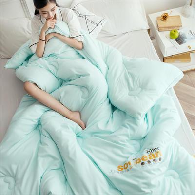 大豆纤维被芯双人夏被床上用品加厚纯棉被子冬被 150x200cm/5斤 绿色