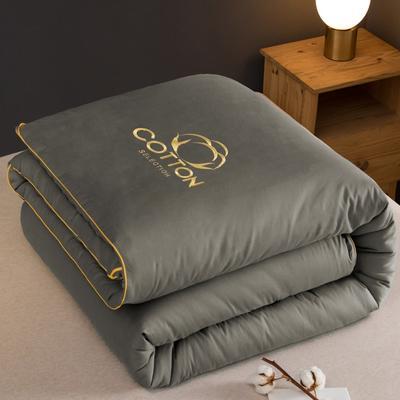 2020新款新概念棉花被被子被芯 150*200cm  4斤 灰色
