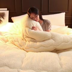 羊羔绒 冬被 150x200cm5斤 羊羔绒-白色