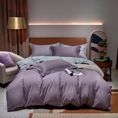 2020新款秋冬双拼磨毛四件套柯林 1.8m床单款四件套 柯林 葡萄紫