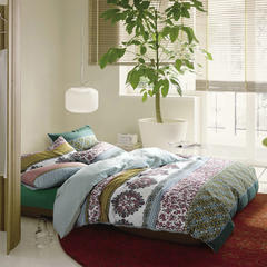 彩窝窝磨毛丹麦系列套件 小号1.2m三件套床单款 芬妮