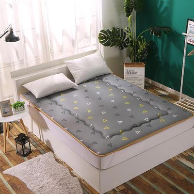 3D透气印花床垫 90*200cm 闲暇空间
