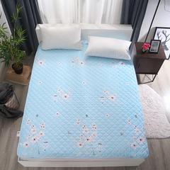 可水洗纳米印花床护垫 90*200cm 醉花语