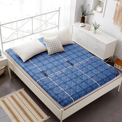 磨毛床垫 加厚款 有宿舍懒人图 90*200cm 印象空间