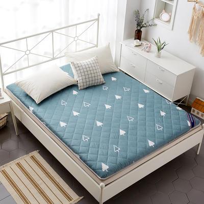 磨毛床垫 加厚款 有宿舍懒人图 100*200cm 奇幻森林