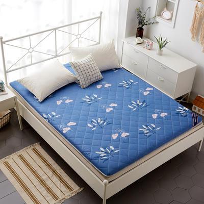 磨毛床垫 加厚款 有宿舍懒人图 90*200cm 清新花语