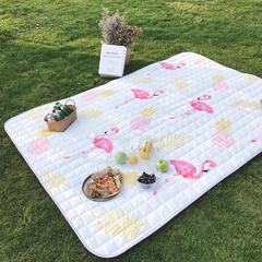 2018新款野餐垫 140*200 菠萝火鸟