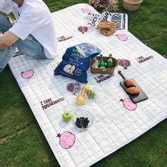 2018新款野餐垫 140*200 石榴