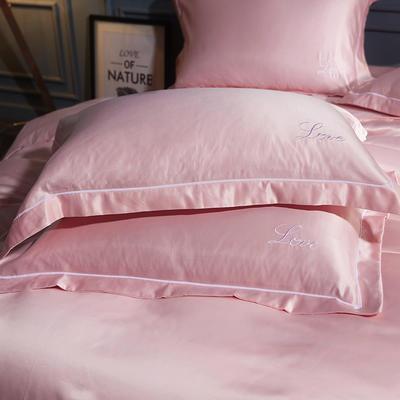 水洗真丝单品枕套 48cmx74cm枕套一对 温晨