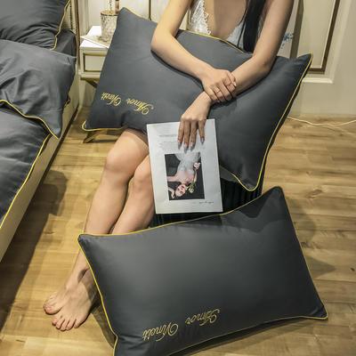 2020新款60长绒棉-单品枕套 48*74×2 赫啦-爵士灰