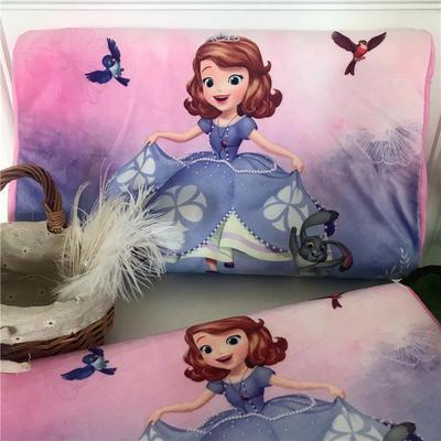 2019新款冬款保暖儿童乳胶枕卡通乳胶枕套 单枕套40*60*10*12 小公主