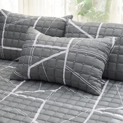 2019 新款磨毛夹棉枕套 48cmX74cm/对 线条主义