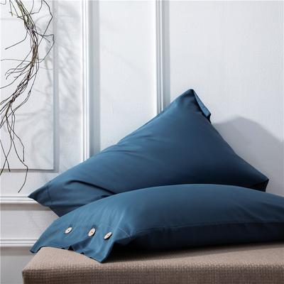 2019新品A类60S长绒棉全棉单品枕套 48cmX74cm/对 灰兰