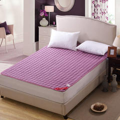 磨毛床护垫 90*200cm 紫色