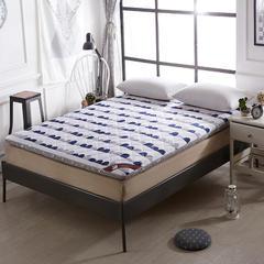 帛奴床垫-磨毛加厚印花床垫 90*200cm 激情时代