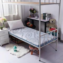 记忆棉双面加厚学生床垫 90*200cm 畅想-浅蓝
