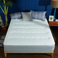 针织布/舒棉绒 双面用抗菌夹 棉记忆棉床垫 0.9m(学生床) 针织布(白色)