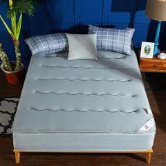 针织布/舒棉绒 双面用抗菌夹 棉记忆棉床垫 0.9m(学生床) 针织布(灰色)