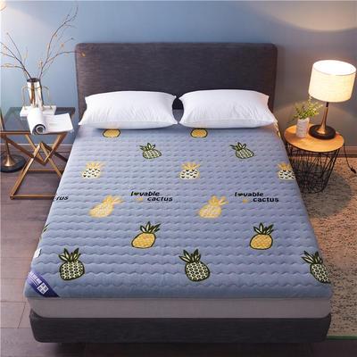 2019新款-法兰绒绗绣加厚双面床垫6cm 90*200cm 菠萝派对