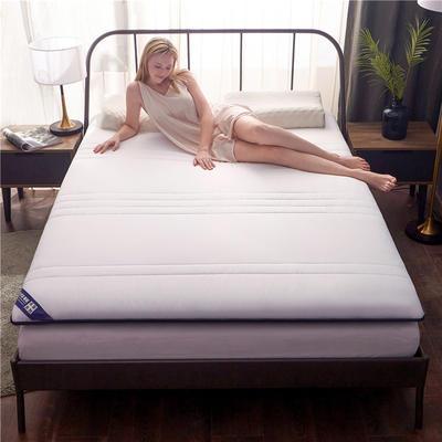 2019新款-加密磨毛加厚雙面床墊10cm 90*200cm 白+藍