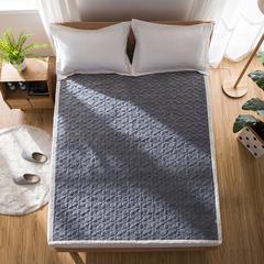 2018新款-全棉双面软床垫 90*200cm 烟灰-自由飞翔