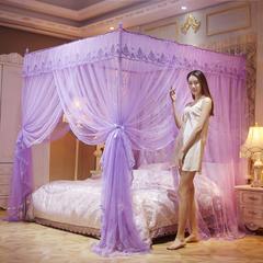 2018新款宫廷不锈钢蕾丝蚊帐22mm支架 1.5m 雅典娜-紫色